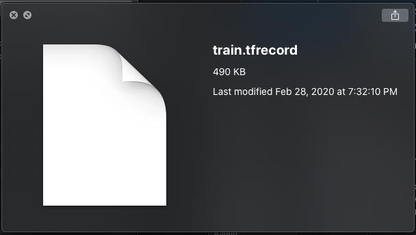 Quicklook Screenshot: train.tfrecord 490KB