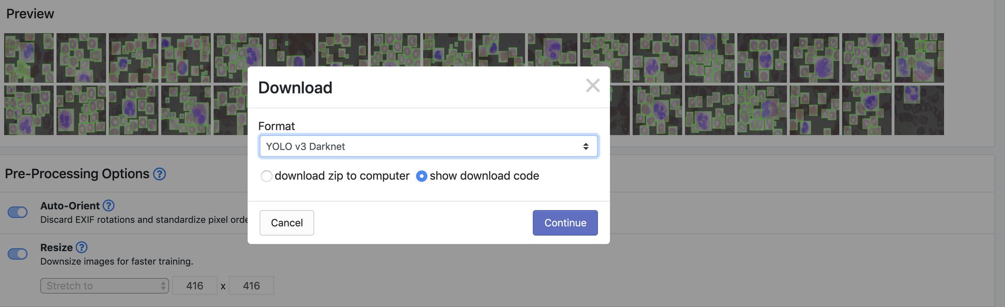 Roboflow Screenshot: YOLO v3 Darknet Download.
