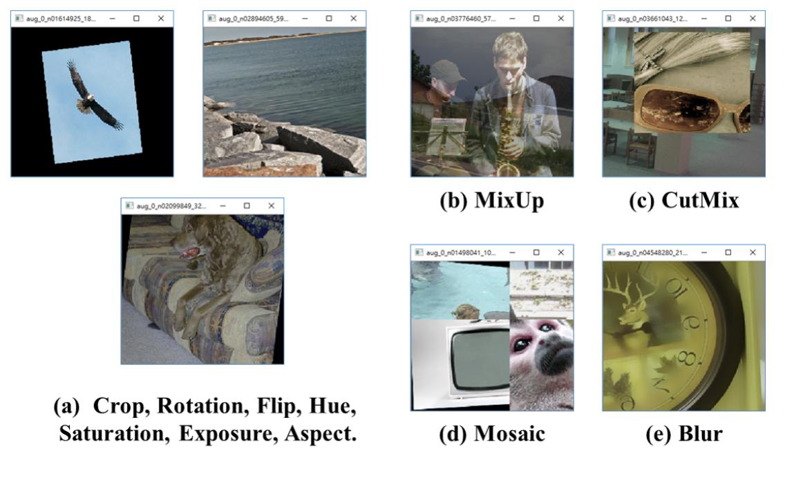 Crop, Rotation, Flip, Hue, Saturation, Exposure, Aspect Ratio, MixUp, CutMix, Mosaic, Blur