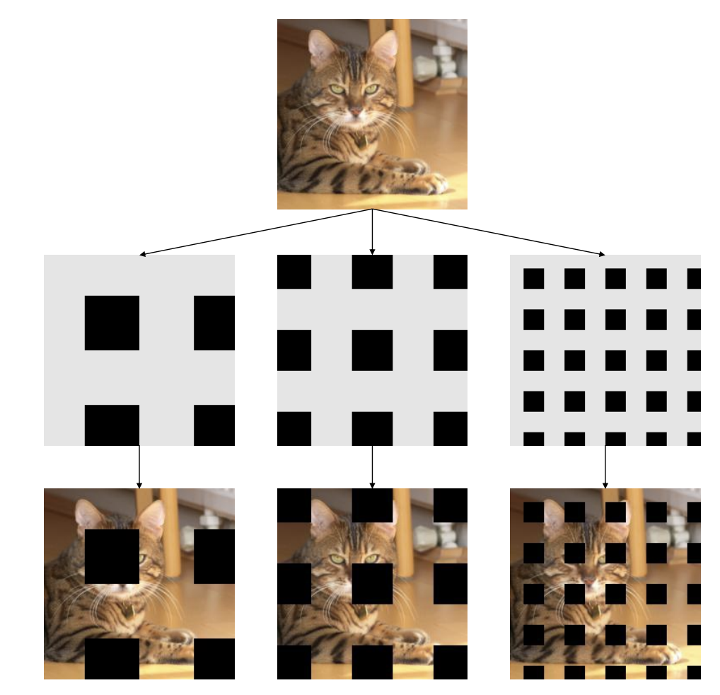 Cat with grids of black squares overlaid in various spacing and sizes.