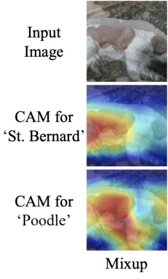 Mixup Visualization: Input image, CAM for St Bernard, CAM for Poodle