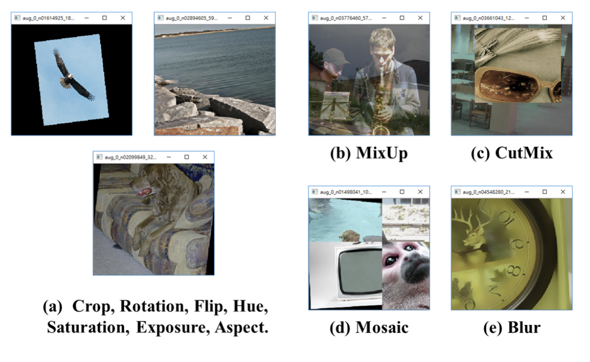 Examples of MixUp, CutMix, Mosaic, and Blur Augmentations.