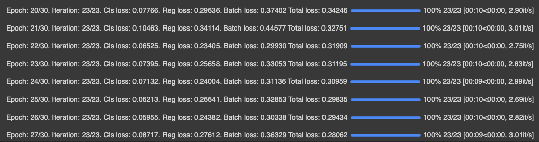 Terminal Screenshot: training epochs and loss values (Epoch 27/30, Total Loss 0.28062)