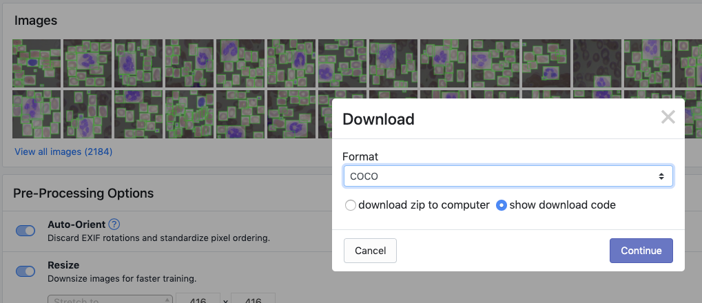 Roboflow Screenshot: Download Dataset dialog (COCO JSON format, show download code)