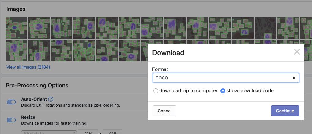 Roboflow Screenshot: Download Dataset dialog (COCO JSON format, show download code)