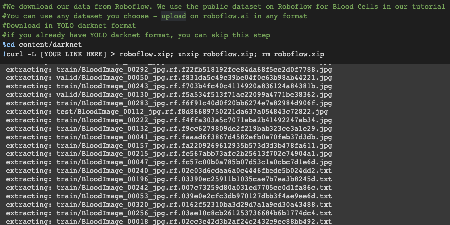 Terminal Screenshot: Downloading a dataset from Roboflow.