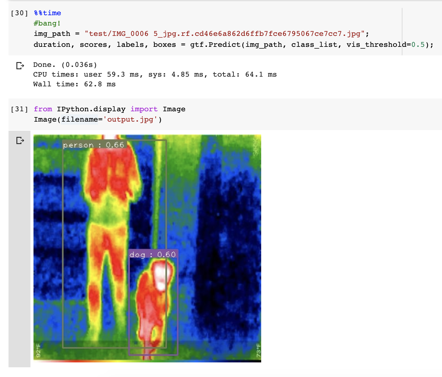 Jupyter Notebook screenshot: showing inference on a thermal image of a dog and a person.