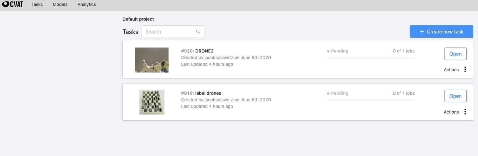 CVAT Screenshot: Default Project Tasks