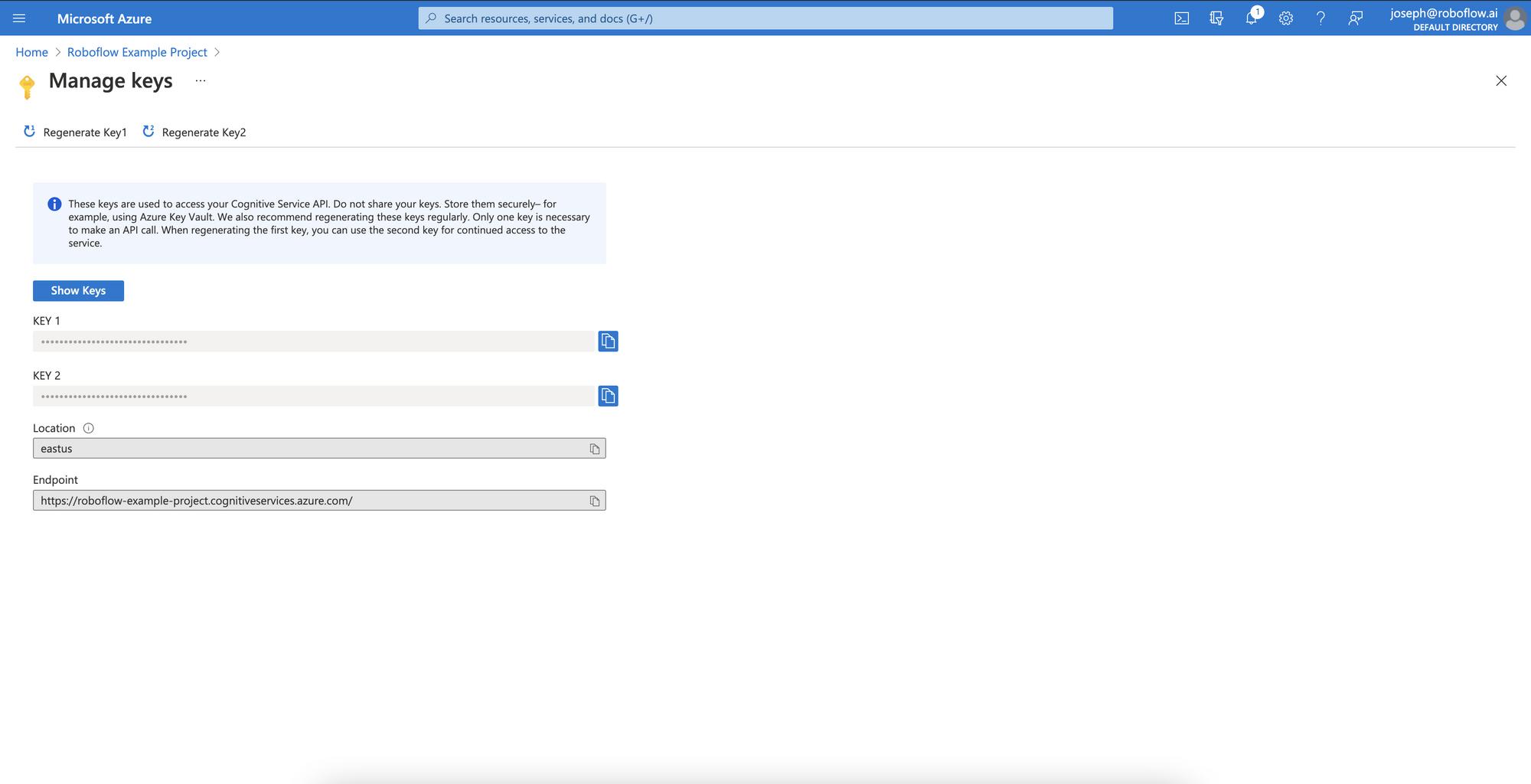 The API Keys for a Microsoft Azure project.